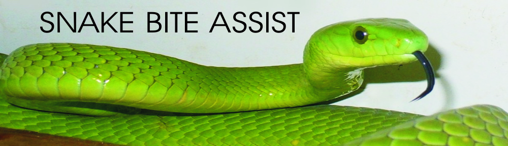 www.snakebiteassist.co.za
